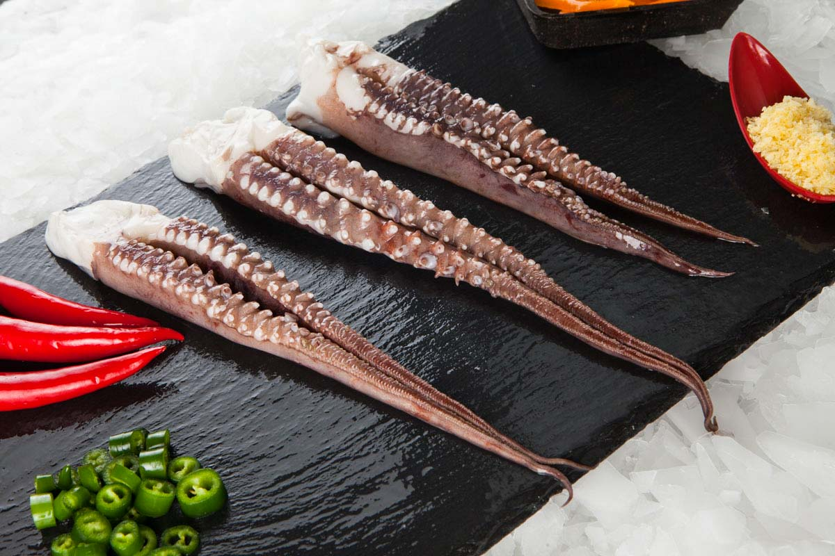 Super Fish Πλοκάμι Γιγάντιου Καλαμαριού / dosidicus gigas