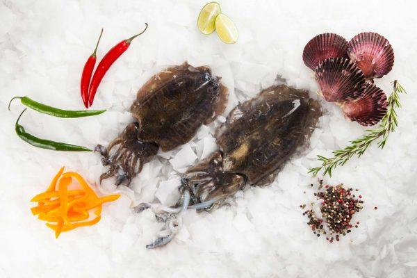 Super Fish Σουπιά Αιγαίου Ολόκληρη / sepia officinalis