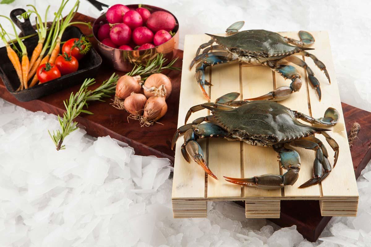 Supper Fish Ψάρια